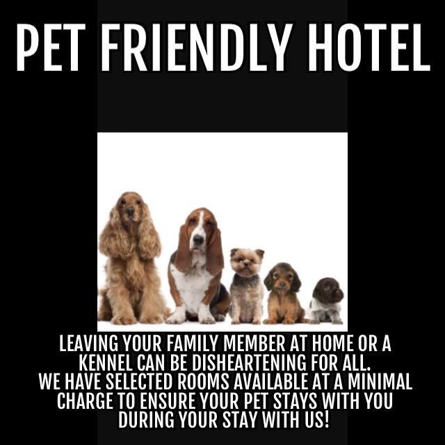 Pet friendly hotel in North Edmonton